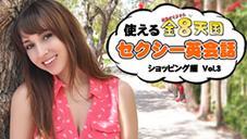 シェイ・ラーレン 使える金8天国セクシー英会話 ショッピング編 Vol.3