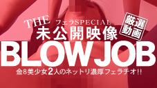 リンダ エリカ BLOW JOB The Unreleased 未公開映像 金8美少女二人のネットリ濃厚フェラチオ!! Linda Erica