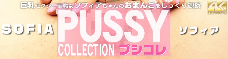 PUSSY COLLECTION 巨乳セクシー美魔女ソフィアちゃんののおまんこをじっくり観察 プシコレ Sofia / ソフィア