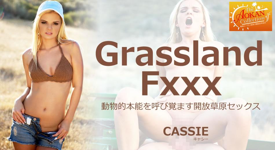 動物的本能を呼び覚ます開放草原セックス Grassland Fxxx Cassie