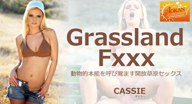 動物的本能を呼び覚ます開放草原セックス Grassland Fxxx Cassie/ キャシー
