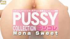 PUSSY COLLECTION Observed a pussy slowly and carefully