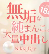 白人美少女の無垢な純まんこに大量中出し 18歳 VOL1 Nikki Dry / ニッキー ドライ